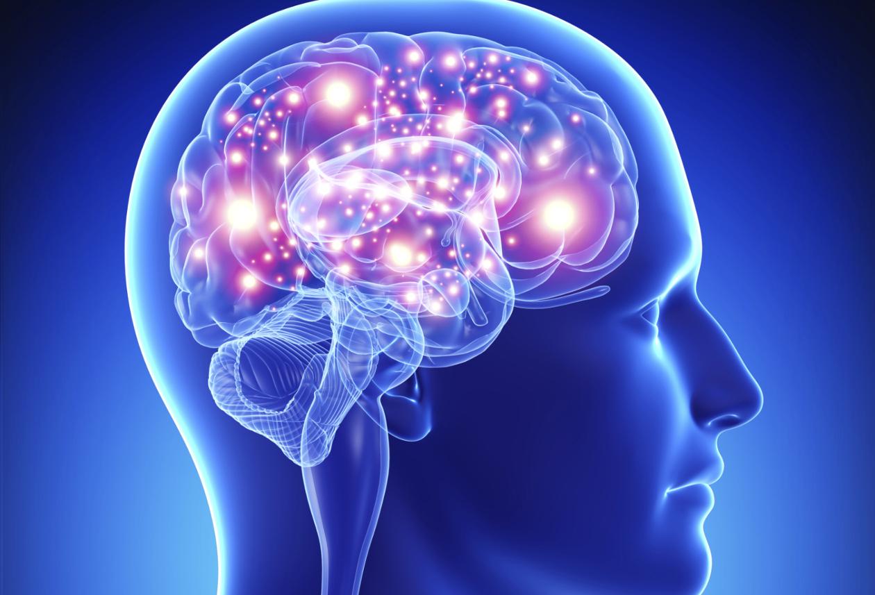 Células que protegem os neurónios podem ser o veículo usado pelo coronavírus para infetar o cérebro