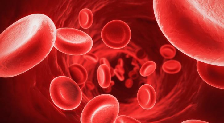 """Ministra angolana considera """"negligência grosseira"""" transfusão que contaminou menor com HIV"""